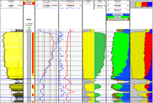 Petrophysics consultants - Results of the petrophysical analysis of a single well